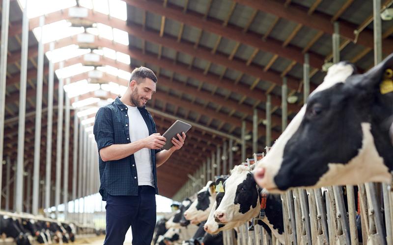 O EducaPoint cresceu: Com mais de 140 cursos on-line voltados ao agronegócio,  a plataforma passa a vender também cursos individuais