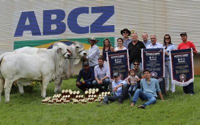 Casa Branca faz Grandes Campeões Brahman e é Melhor Criador e Melhor Expositor da raça na Expozebu 2019