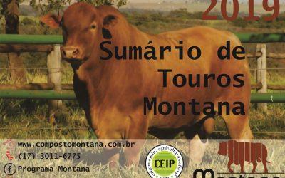 Programa Montana lança Sumário de Touros 2019