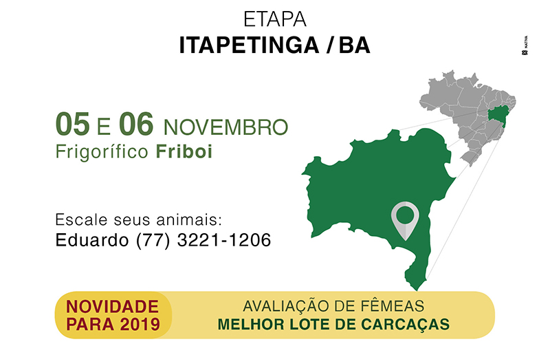 Bahia receberá etapa do Circuito Nelore de Qualidade