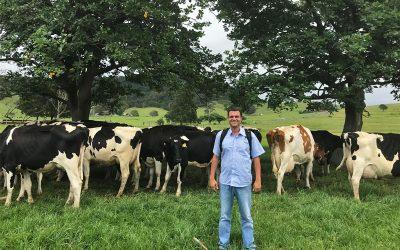 Felipe Zanforlin: Bom manejo é pilar para sucesso e sustentabilidade da cadeia produtiva do leite