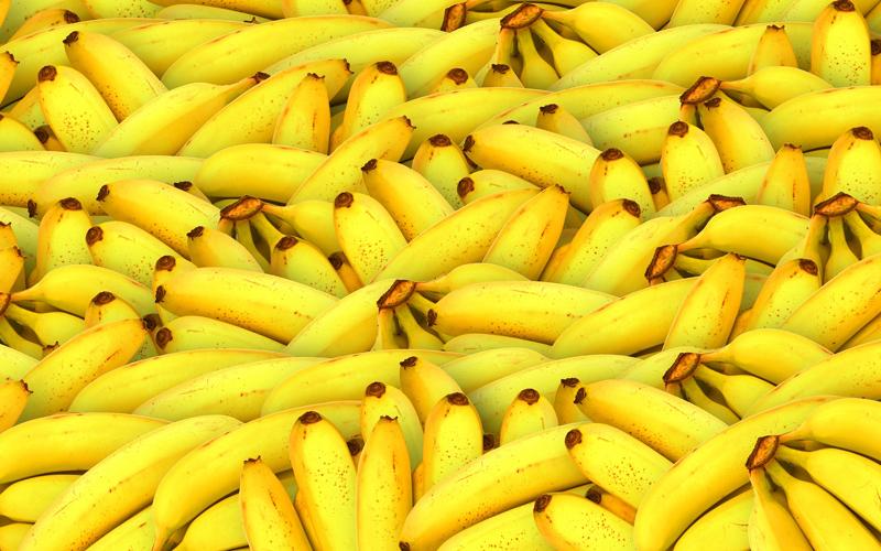 UPL leva soluções para banana, manga e mamão ao Abanorte Fruit Connections, em Janaúba (MG)