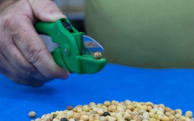 GenesisGroup convida empreendedores e startups a colaborar no desenvolvimento de uma solução para automação do corte da soja para análise de amostras
