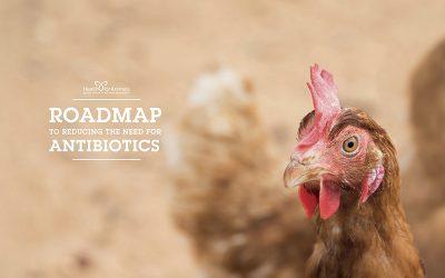 SINDAN apoia Semana Mundial de Alerta aos Antibióticos