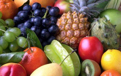 GenesisGroup promove webinar para auxiliar pequenos e médios produtores a certificar produtos orgânicos