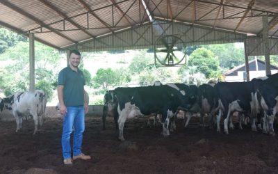 Estresse e desconforto no momento da secagem do leite em vacas causam prejuízos ao produtor, destaca veterinário