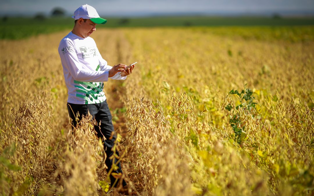 Webinar ABMRA TALKS: Empresas do agro usam a criatividade para fortalecer relação de confiança com seus mercados.