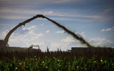 Autoridade Europeia para a Segurança Alimentar dá aval técnico para registro da enzima FUMzyme® em alimentos fermentáveis para todas as espécies