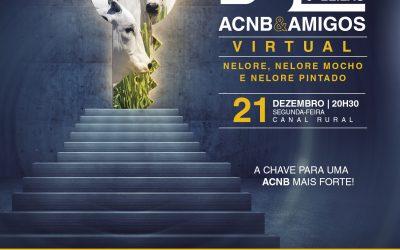 Associação dos Criadores de Nelore do Brasil realiza o 6º Leilão Virtual ACNB & Amigos e anuncia os vencedores do Ranking Nacional e do Circuito Nelore 2020