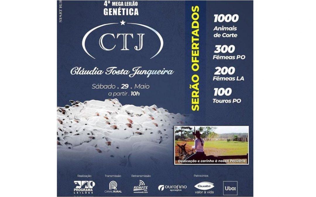 4º Megaleilão Genética CTJ terá super oferta de lotes Nelore
