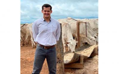 Pontos críticos para ter sucesso no confinamento de bovinos de corte