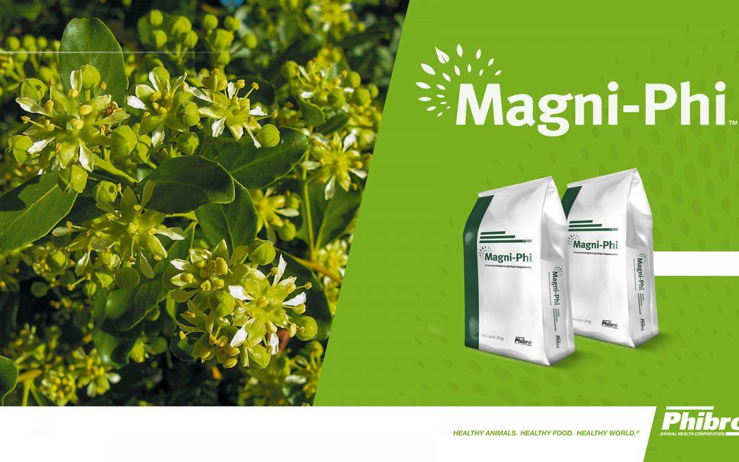 Eficácia do aditivo Magni-Phi é tema de artigo científico publicado no Poultry Science Journal