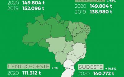 Sul lidera produção por regiões e já representa 31,1% da piscicultura brasileira