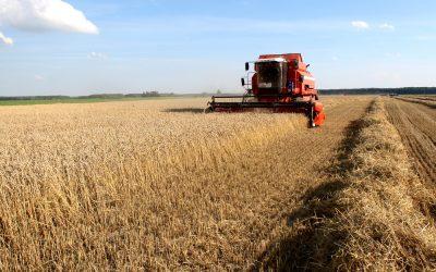 Área tratada com defensivos agrícolas cresceu 12,3% no segundo trimestre. Devido à safrinha, participação do milho dobrou no período